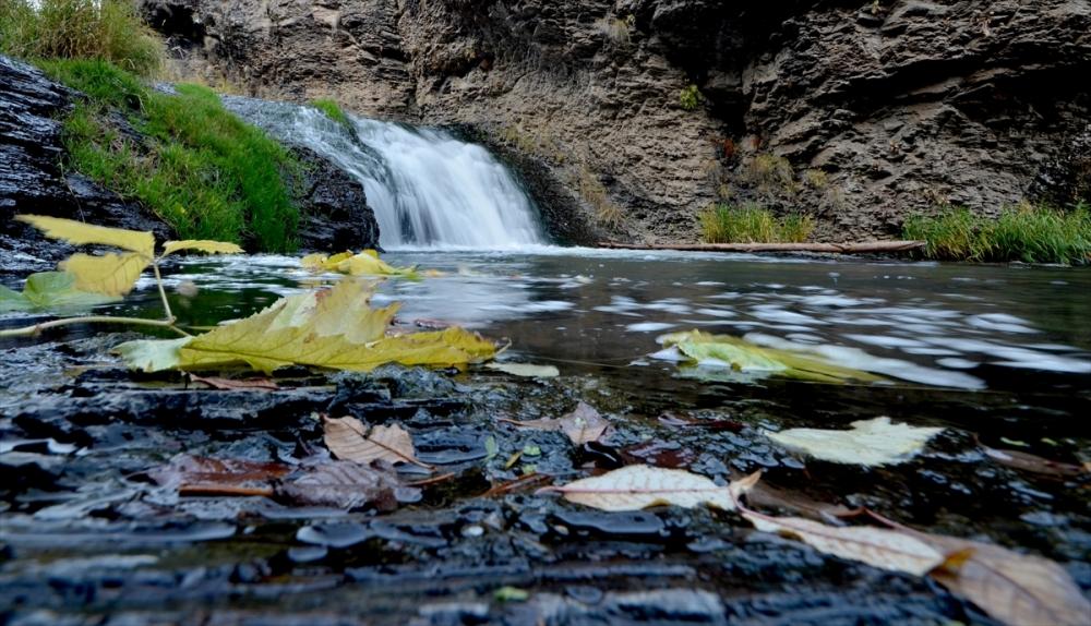 Sarıkamış Ormanları'nda Sonbahar Güzelliği 1