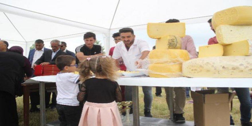 Kars'ta Geleneksel Gravyer ve Kaşar Festivali Yapıldı