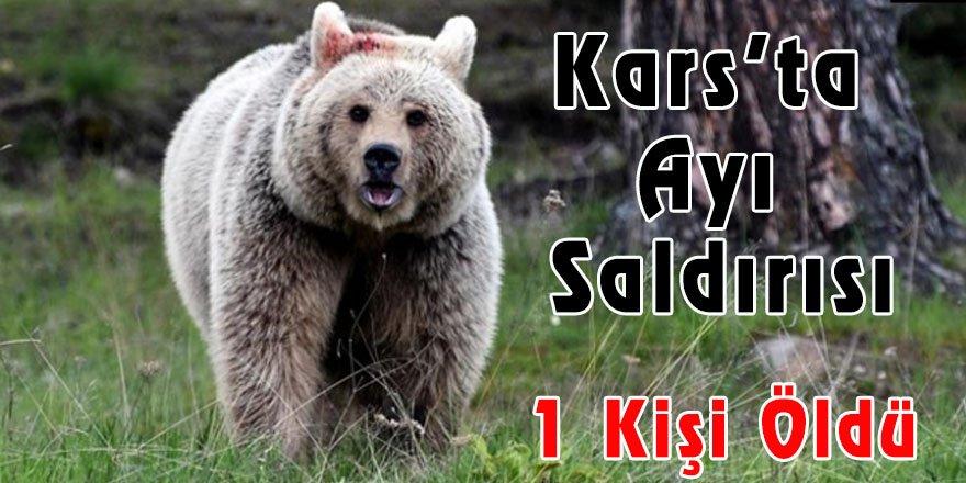 Kars'ta ayı saldırısı 1 kişi öldü