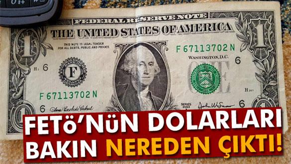 FETÖ'nün Dolarları Bakın Nereden Çıktı