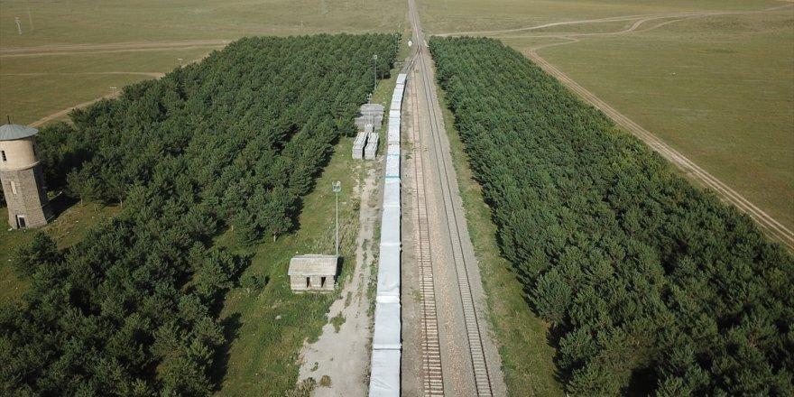 Bozkırın ortasındaki vaha: Selim Tren İstasyonu