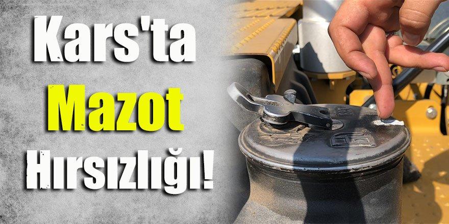 Kars'ta Mazot Hırsızlığı!