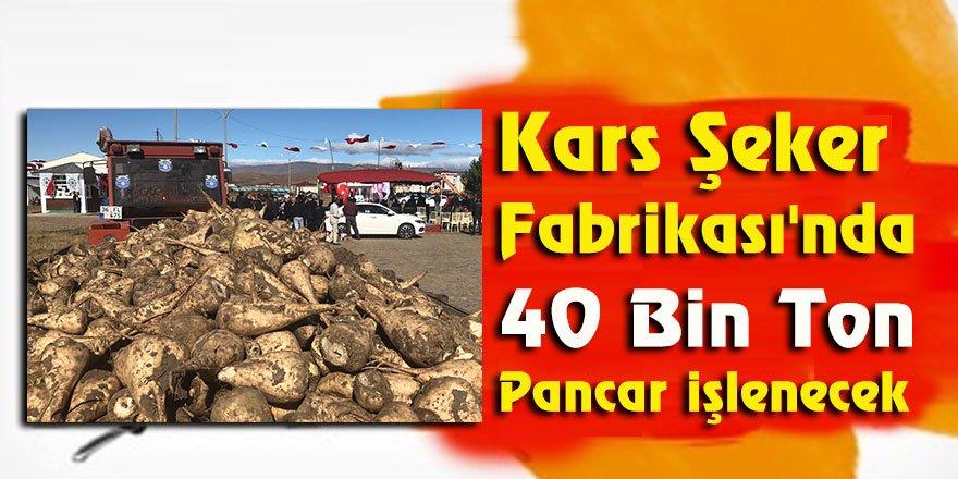 Kars Şeker Fabrikası'nda 40 bin ton pancar işlenecek