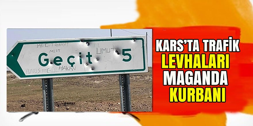 Kars'ta trafik levhaları maganda kurbanı