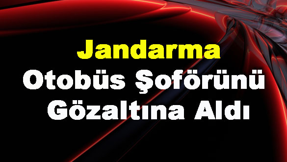 Jandarma Otobüs Şoförünü Gözaltına Aldı