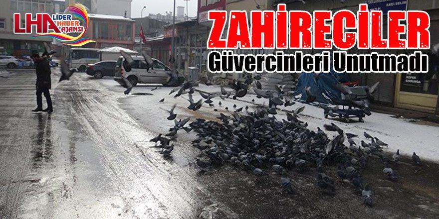Zahireciler Güvercinleri Unutmadı