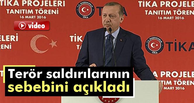 Erdoğan, terör saldırılarının sebebini açıkladı
