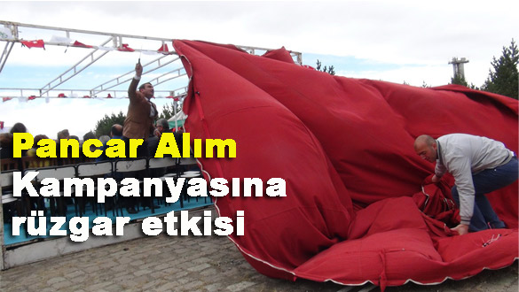Pancar Alım Kampanyasına rüzgar etkisi!
