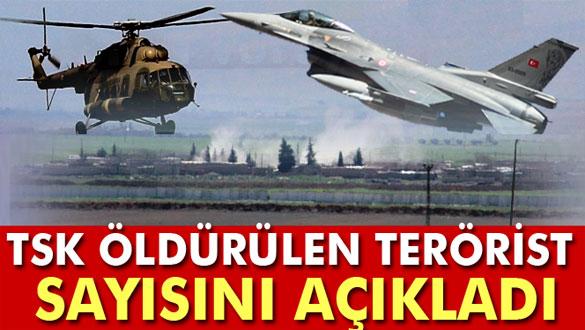 TSK: Şemdinli´de 331 terörist öldürüldü