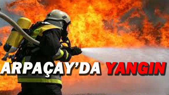 Arpaçay'da Yangın!