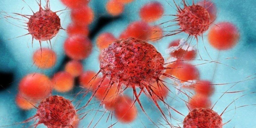 Meme kanseri en sık rastlanan kanser türü