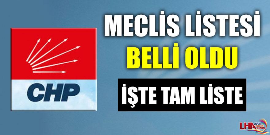 CHP MECLİS LİSTESİ BELLİ OLDU!