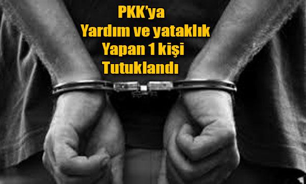 PKK'ya yardım ve yataklık yapan 1 kişi tutuklandı