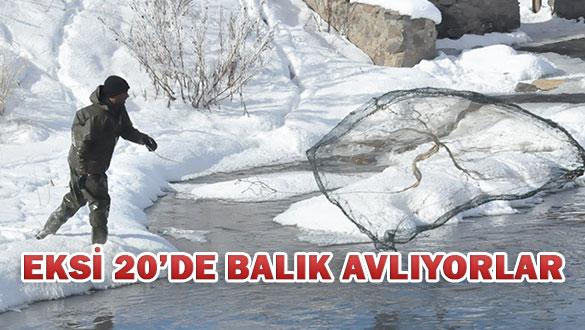 Kars'ta 45 Kiloluk Dev Balık İlgi Odağı Oldu
