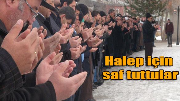 Halep için saf tuttular