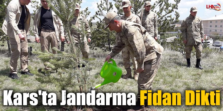 Kars'ta Jandarma Fidan Dikti