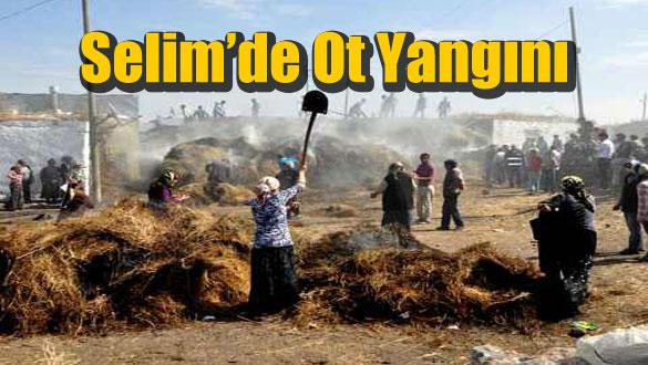 Selim'de Ot Yangını