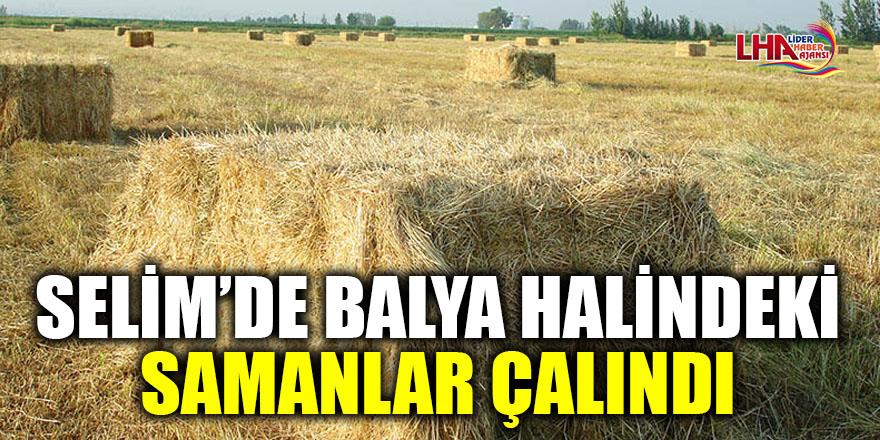 SELİM'DE BALYA HALİNDEKİ SAMANLAR ÇALINDI