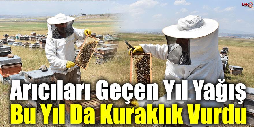 Arıcıları Geçen Yıl Yağış Bu Yıl Da Kuraklık Vurdu