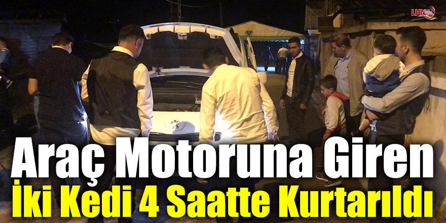 Sarıkamış'ta Araç Motoruna Giren İki Kedi 4 Saatte Kurtarıldı