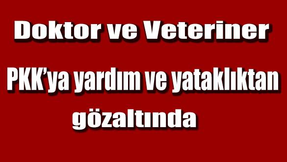 Doktor ve Veteriner PKK'ya yardım ve yataklıktan gözaltında