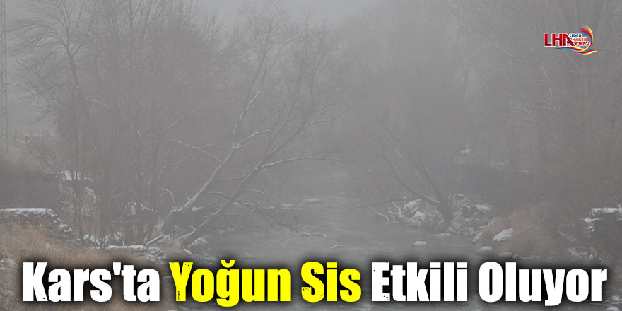 Kars'ta Yoğun Sis Etkili Oluyor