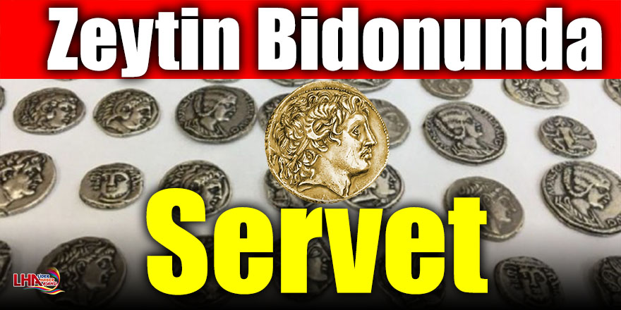 Zeytin Bidonunda Servet