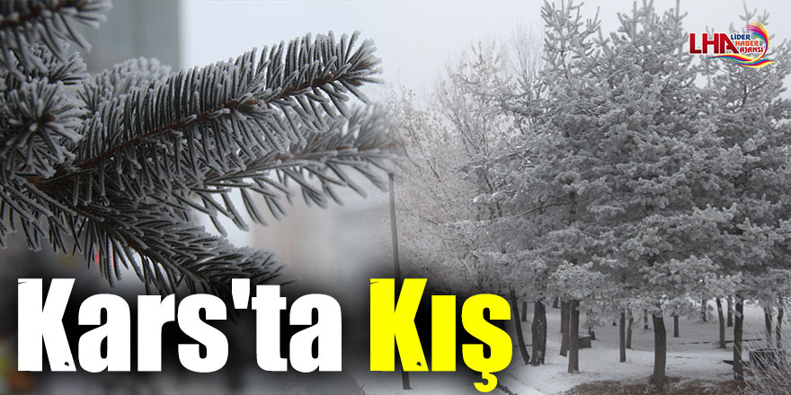 Kars'ta Kış
