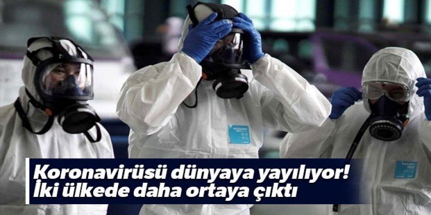 Koronavirüsü dünyaya yayılıyor! İki ülkede daha ortaya çıktı