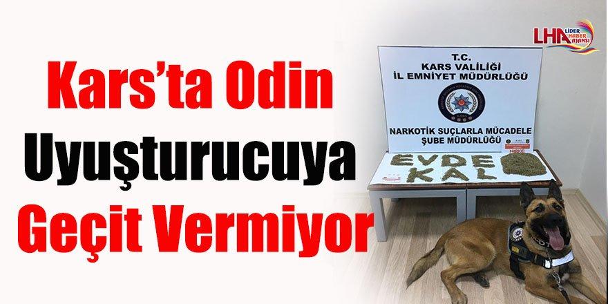 Kars'ta Odin Uyuşturucuya Geçit Vermiyor