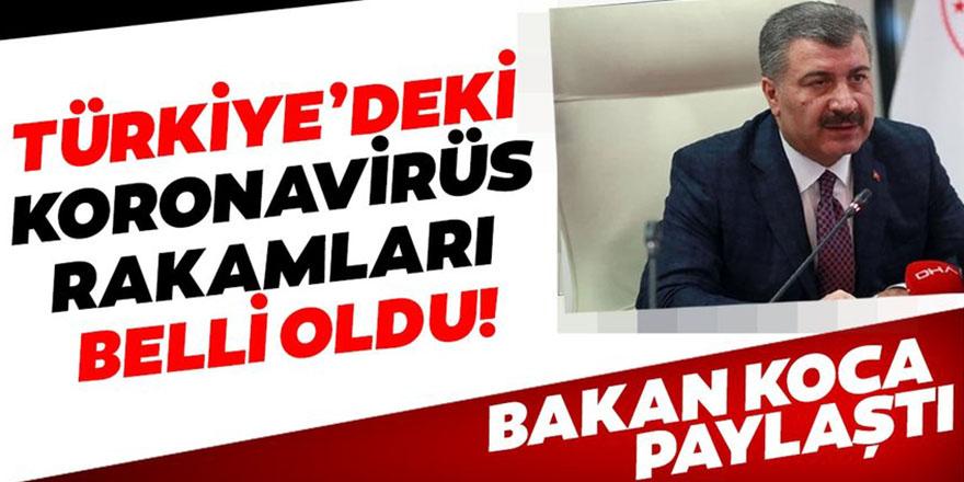 Türkiye'deki son coronavirüsü sayıları açıklandı.
