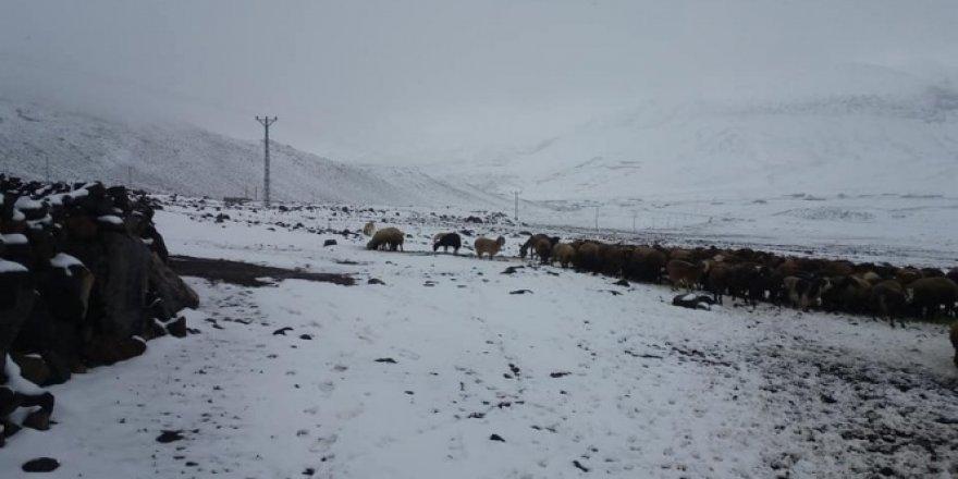 Iğdır'ın yüksek kesimlerine Nisan ayında kar yağdı