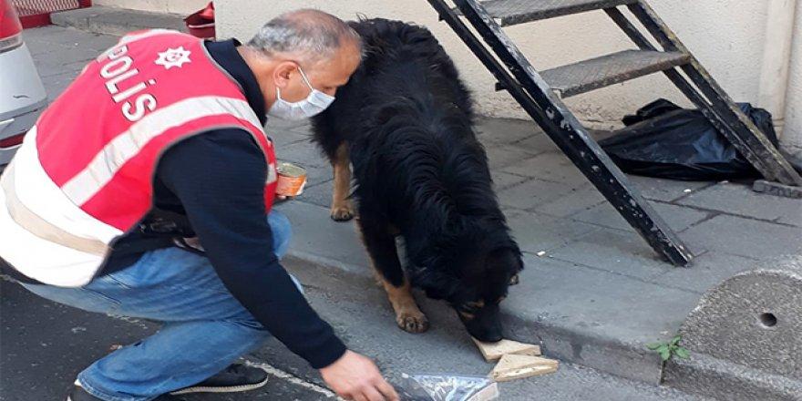 Polis memuru, iftarlık kumanyasını sokak köpeğiyle paylaştı