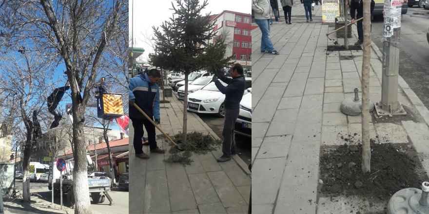 Kars Belediyesi çalışmaları başlattı