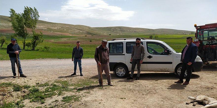 Sivas'ta meteorun izine rastlanılmadı