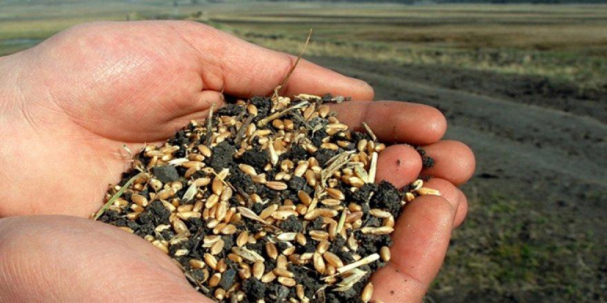 """""""Kara kış""""ın ardından tohumlar toprağa kavuştu"""