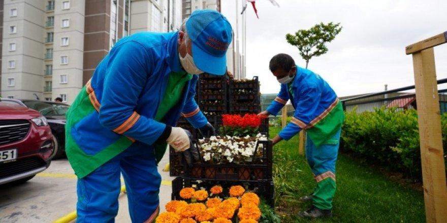 Başakşehir'de atıklar rengarenk çiçeklere dönüştü