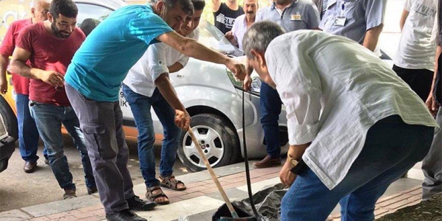 Kaldırımda yürüyen vatandaşların üzerine yılan düştü