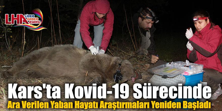 Kars'ta Kovid-19 Sürecinde Ara Verilen Yaban Hayatı Araştırmaları Yeniden Başladı