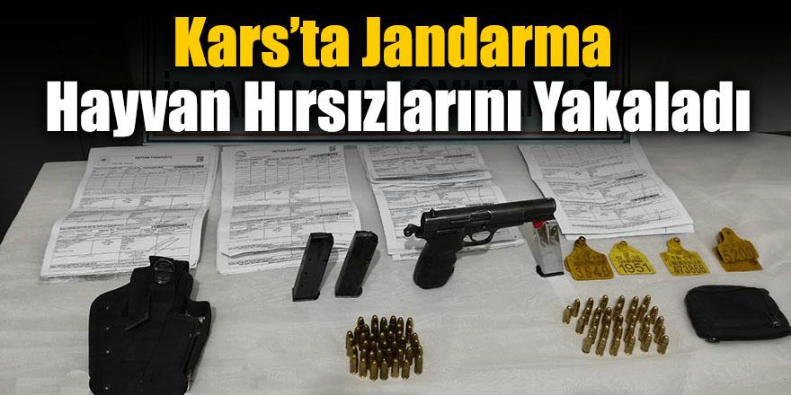 Kars'ta Jandarma Hayvan Hırsızlarını Yakaladı