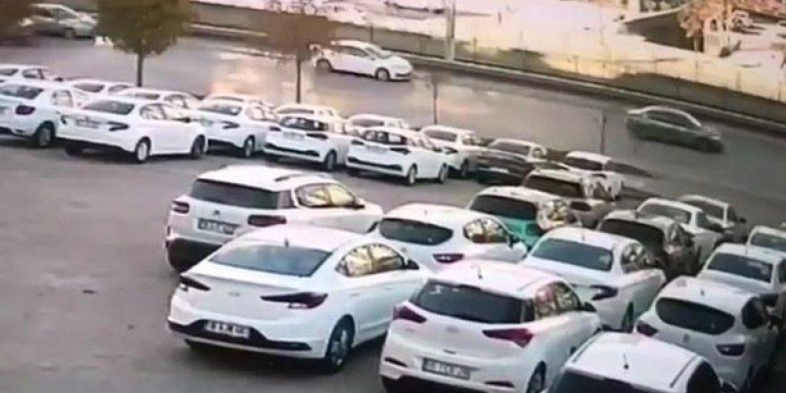 Bursa'da yola atlayan kedi zincirleme kazaya neden oldu