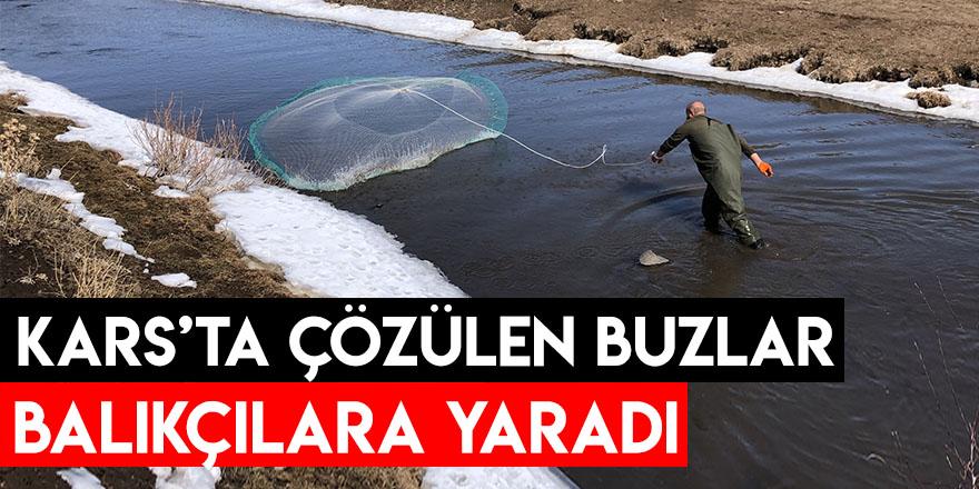 Kars'ta Çözülen Buzlar Balıkçılara Yaradı