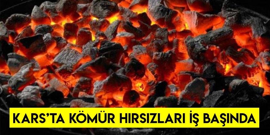 Kars'ta Kömür Hırsızları İş Başında