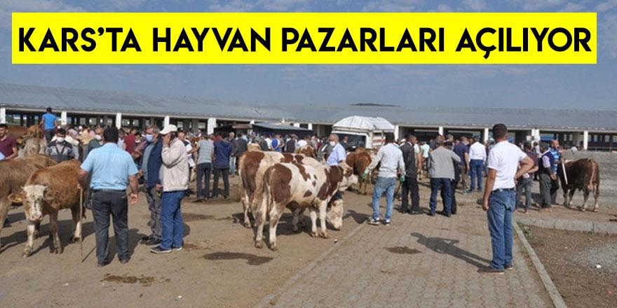 Kars'ta Hayvan Pazarları Açılıyor