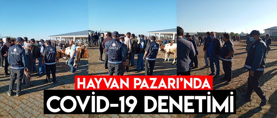 Hayvan Pazarı'nda Covid-19 Denetimi