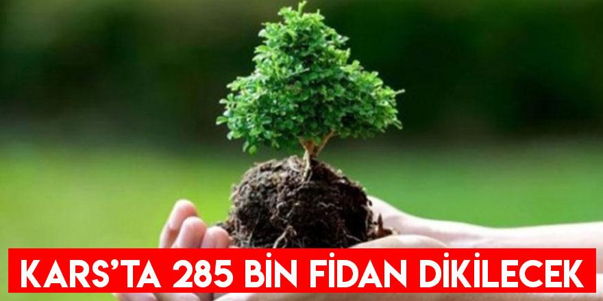 Kars'ta 285 Bin Fidan Dikilecek
