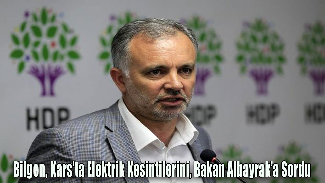 Bilgen, Kars'ta Elektrik Kesintilerini, Bakan Albayrak'a Sordu