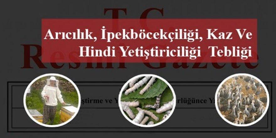 Arıcılık, İpekböcekçiliği, Kaz ve Hindi Yetiştiriciliği Destekleme Başvuruları Bugün Başladı