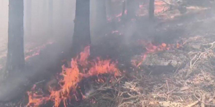 Sarıkamış'ta Yangın Yeniden Başladı!