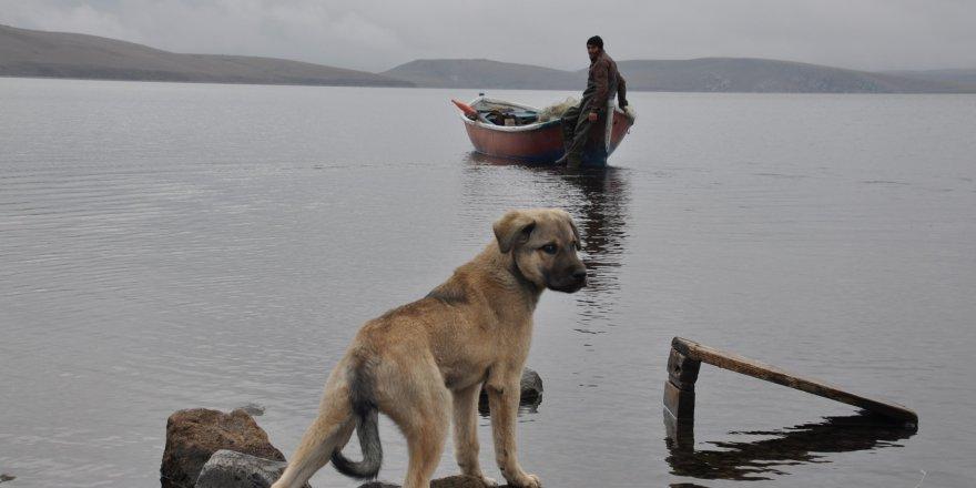 Kars'ta 2 bin 180 rakımlı gölde balıkçılıkla geçimini sağlıyor